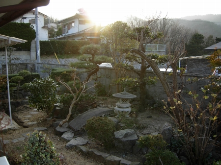 南の庭の眺め