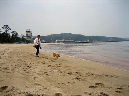 大浜海岸イメージ3