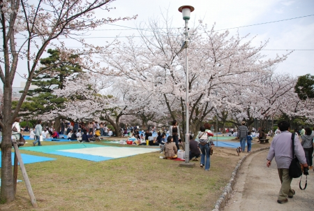 徳島中央公園です