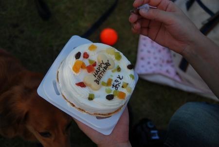 なんと!ケーキでお祝いしてくれました!