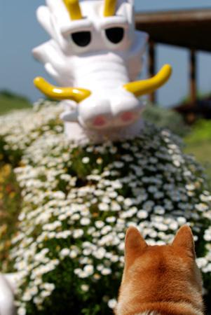 マスコットの竜を形どった花のオブジェ