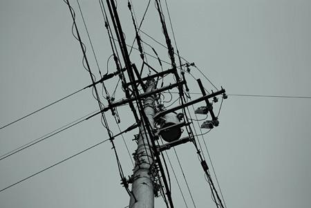 電柱見上げてみた