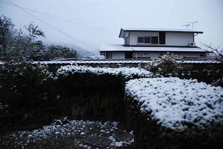 再び雪の朝