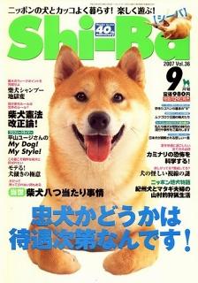 Shi-ba 2007年9月号