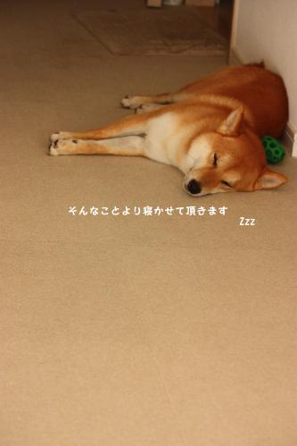 200808244.jpg