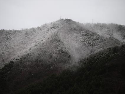 裏山の雪 その2