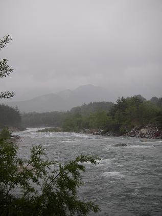 近所の川(2009年5月24日)