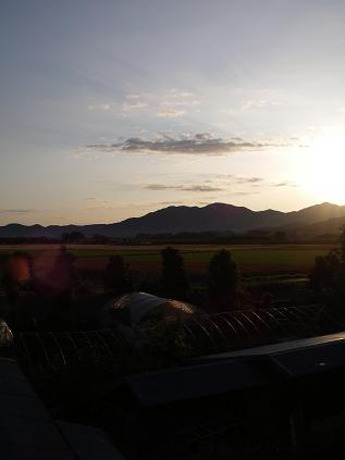 早朝の景色