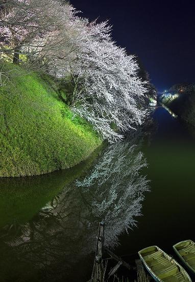 水面に映る_DSC04967