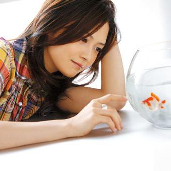 yui136_p.jpg