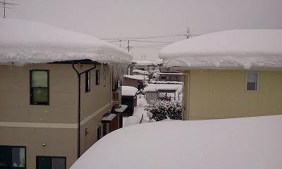 s-2012-01-31_09_39_51.jpg