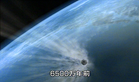 bog-g-485.jpg