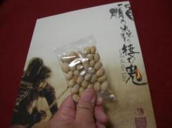 パンフと豆②