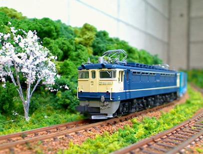 EF65桜3