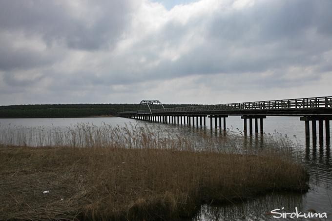 中之島ブリッジ