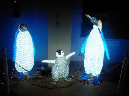 ペンギンの親子♪
