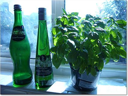ボトルグリーン  エルダーフラワー 2種類