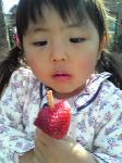 落ちそうなイチゴ