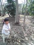 市民の森で枝2