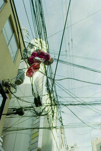 頭上の忘れ物/祇園町北側