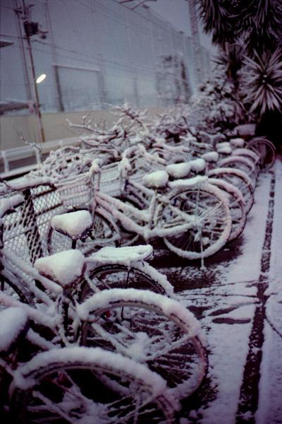 夜明け前/雪/線路脇