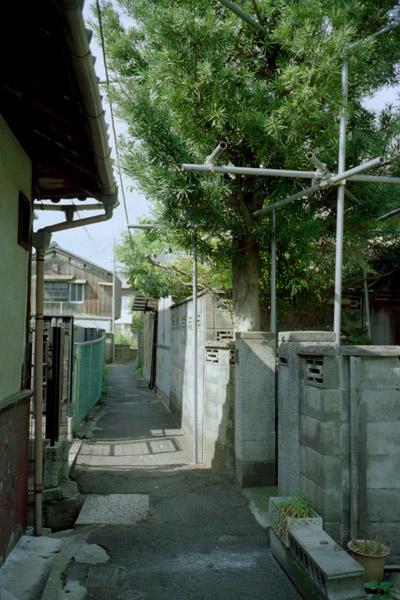路地の家並/橋本
