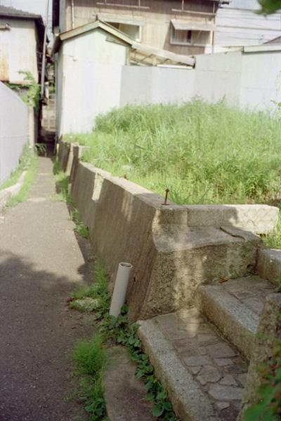 棄景/橋本