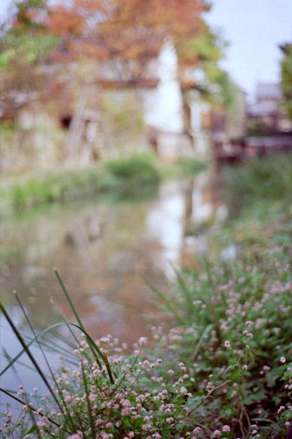 秋の八幡堀