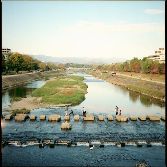 飛び石/鴨川