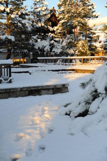 雪の朝/妙心寺
