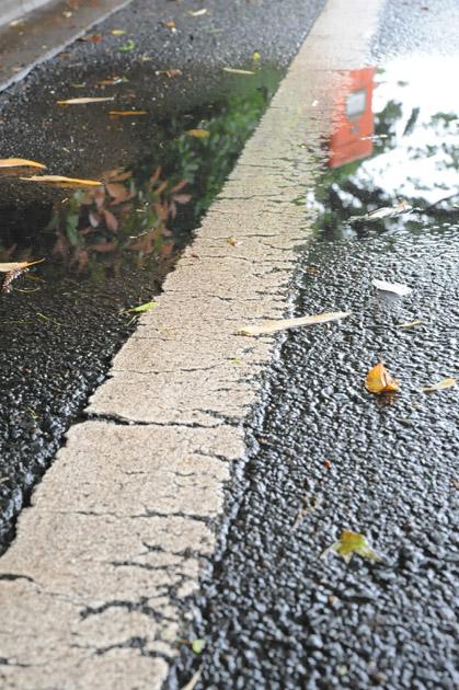 雨後/水たまり