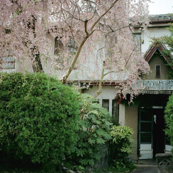 春/銀月アパートメント