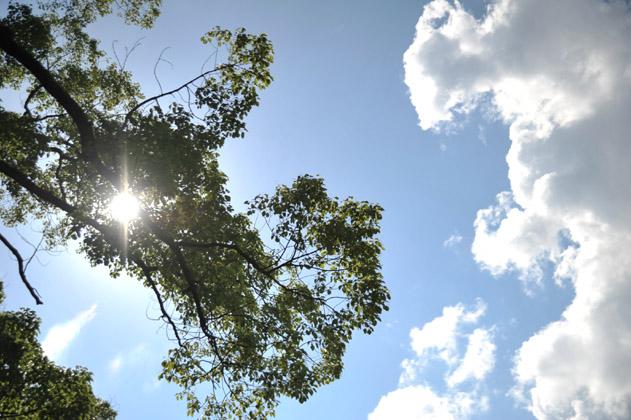 真夏色の空