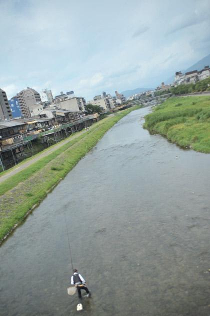 鴨川/釣り人
