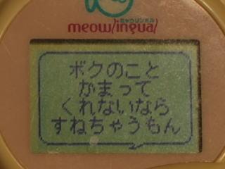 101111-3.jpg