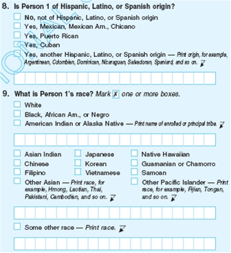 Census_2010_Race_Ethnicity_Ex.jpg