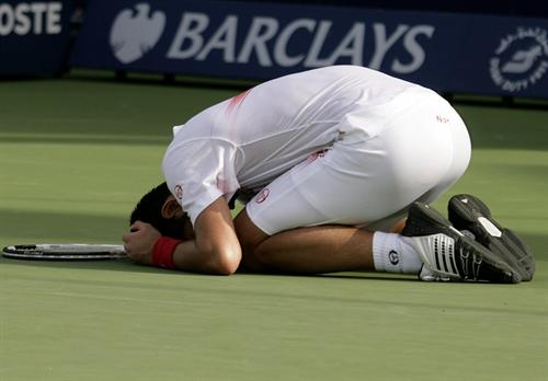 Jubilant_Djokovic_4d22.jpg