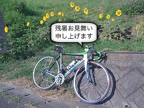 画像 003-s