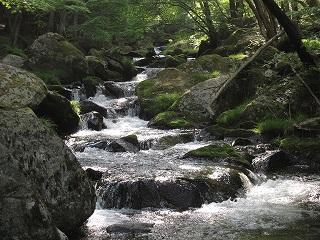 20090511滝川渓谷 029