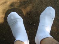 uni socks No.2