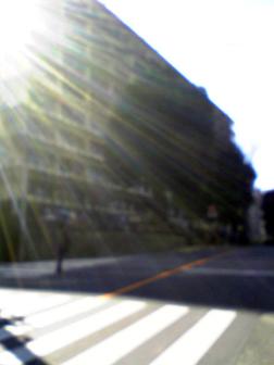 埼玉県 狭山市 行政書士 社会保険労務士 事務所 埼玉県庁