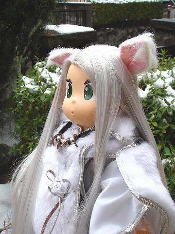 niwayuki02-DSC09227.jpg