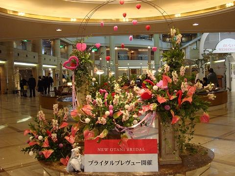 oosakajyoginko13-DSC03933.jpg