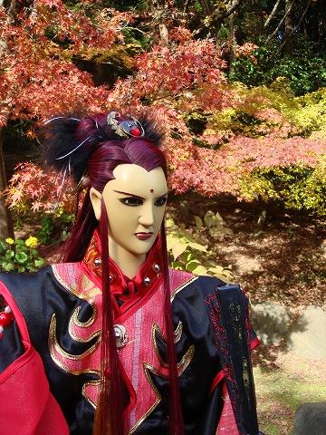 yue-momiji12-DSC08514.jpg