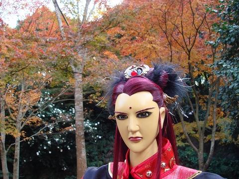 yue-momiji14-DSC08521.jpg