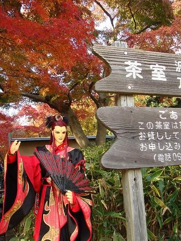 yue-momiji25-DSC08559.jpg