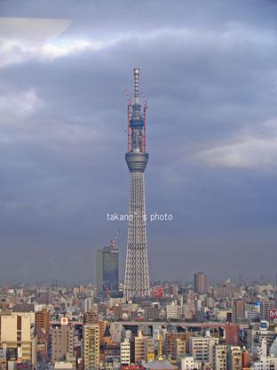20110228-05.jpg