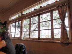 窓の外には大きな木が…