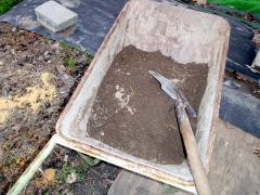 芋畑の砂を入れてみた