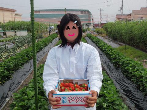 イチゴ狩り♪